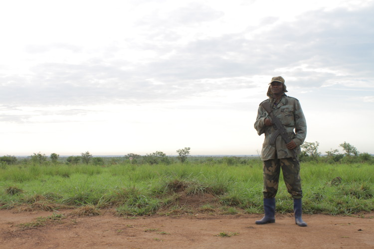One of Garamba National Park's brave rangers standing guard.